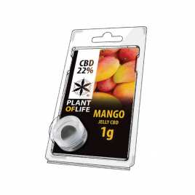 JELLY CBD FRUIT 22% Mango
